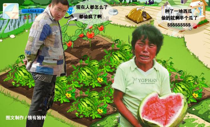 [转]偷菜的后果 - 小草 -  高山流水
