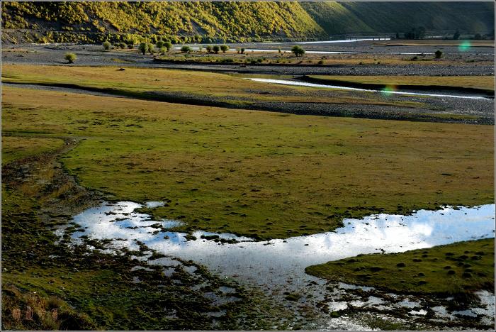 [原创]新都桥——追逐飞逝的光影 - 迁徙的鸟 - 迁徙鸟儿的湿地