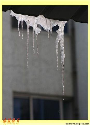 冰妞妞 - 曉風殘月 - 曉風殘月