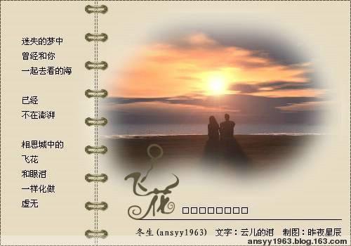 2009年1月6日 - 华山梅 - 华山梅欢迎您