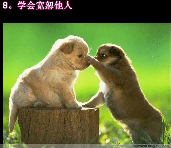 寻求快乐 - 静远堂 - 静远堂 JING YUAN
