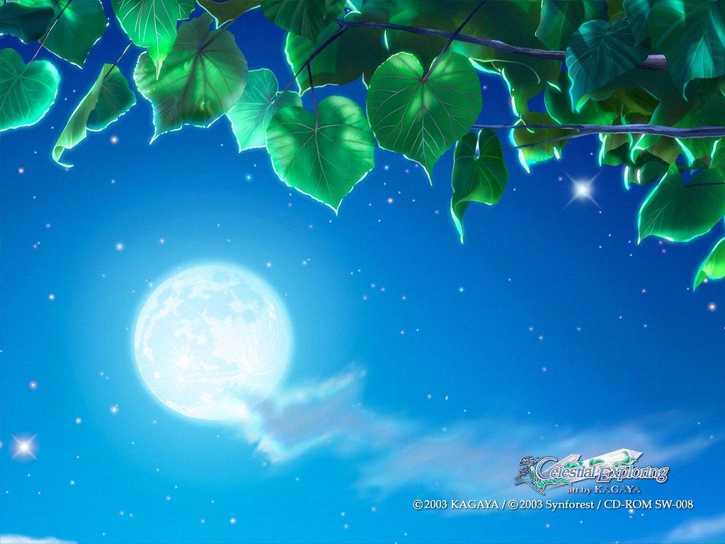 (原创) 月夜无月   - 小熊 - 小熊的博客