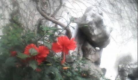 【岁月寻踪】魂归艺圃 - 风情一剑 - 風情一劍的靜思世界