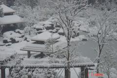 [原创] 杭州下大雪了 - 田园之歌 - idyl.田园之歌