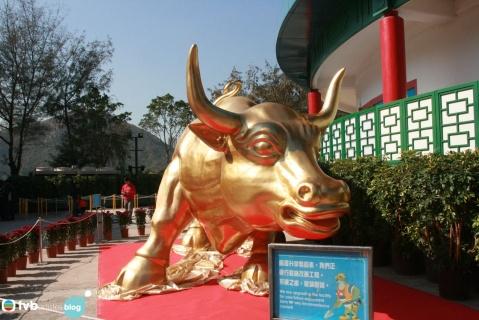 2009年1月26日 - 王祖蓝 - 王祖蓝的博客