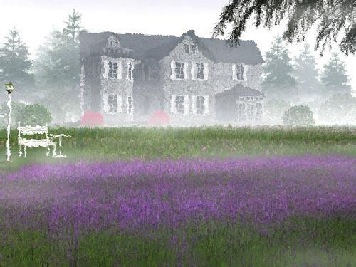 浪漫的源头:熏衣草的起源[图]