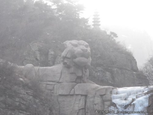 谁欺负了崂山的石头(五) - qdgcq - 青岛从容