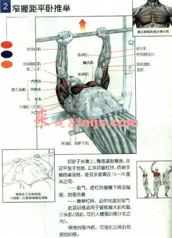 健身图解,哑铃健身图解,男子哑铃健身图解(第4页)_点 ...