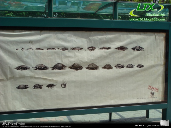 2007-08-18 遇见一张最适合广州人的海报 - 看更阿伯-熙叔 - 看更房