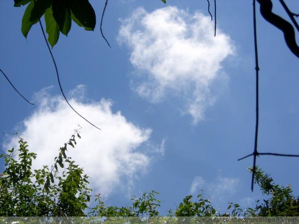 风动云飞[原创] - 太阳舞(sundance) - 太阳舞(sundance)