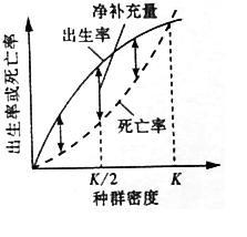 奇怪的等式(10高考题简评3)