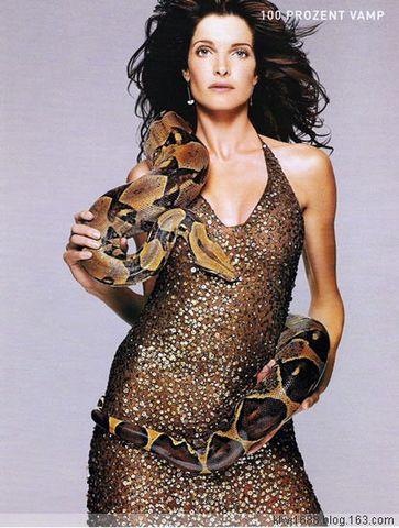 美女蛇 百年孤独君傲