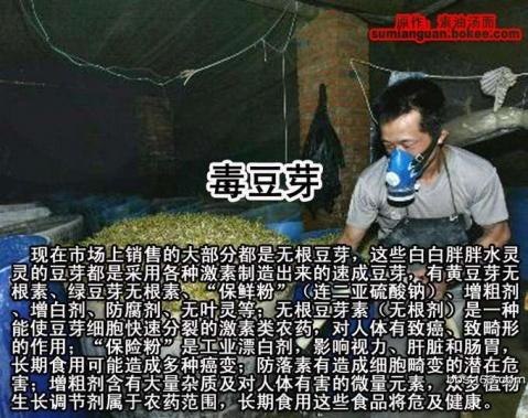 【引用】中国人常吃的38种有毒食物 - 文采畫室主人 - 文采書畫