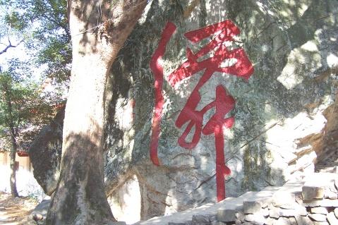 仙门鹤洞游(下) - 老陶 - 行走时光