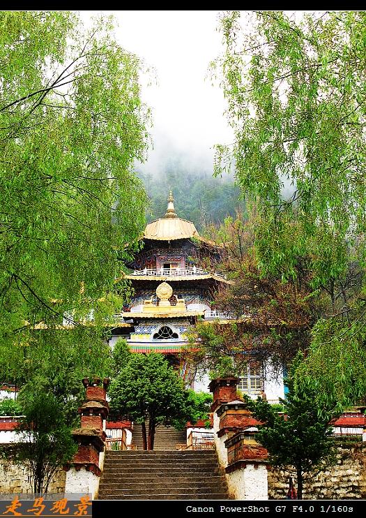青藏高原之行____林芝的瞬间和片段 - 西樱 - 走马观景