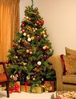 圣诞节的历史和由来 - 天使哥哥 - 天使论坛