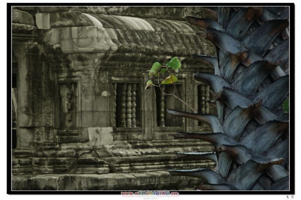 [原创]前世今生吴哥窟--柬埔寨 - 飞天侠 - 飞天侠的摄影视界