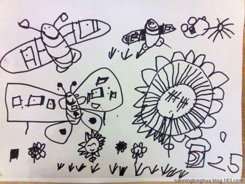 线描--美丽的蝴蝶图片