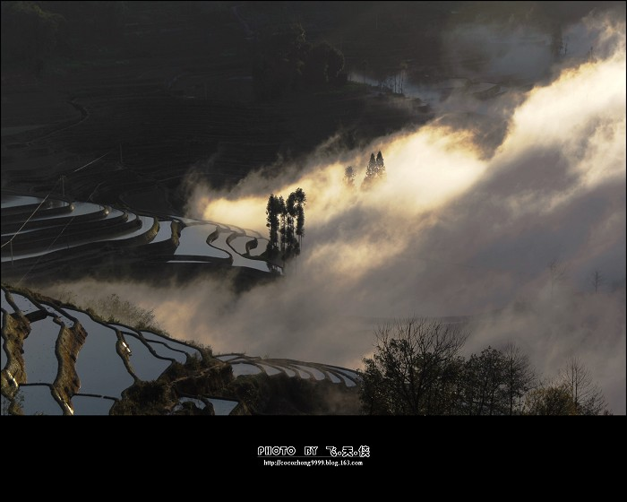 [彩云之南]雾锁元阳(1) - 雨潼 - 飞天侠的摄影视界