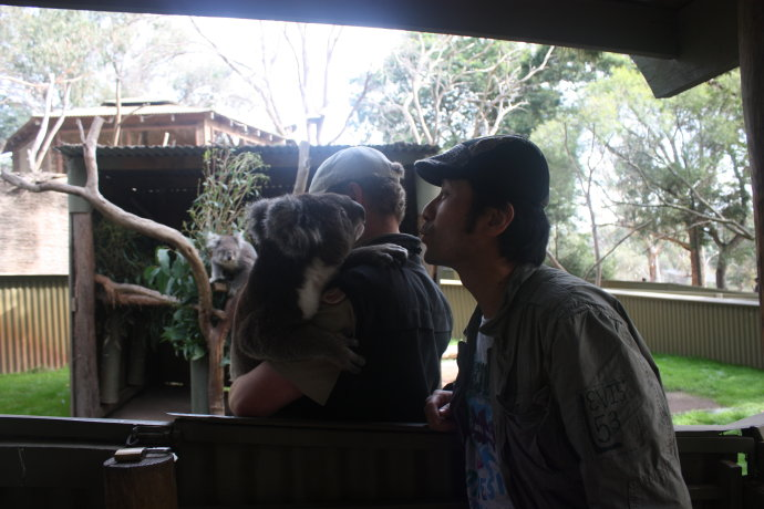 在澳洲被袋鼠包围(组图) - 徐铁人 - 徐铁人的博客