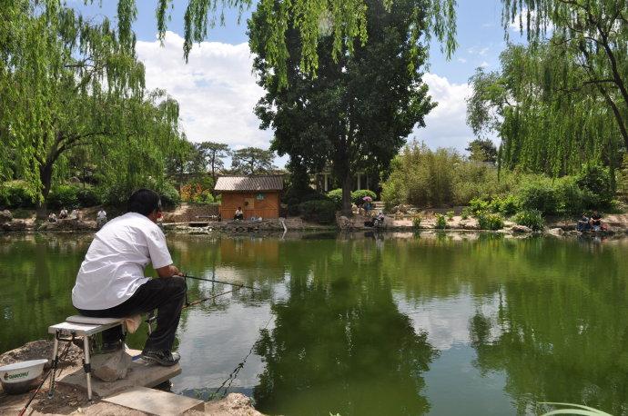 云水谣(2010-5-30紫竹院) - 陶东风 - 陶东风