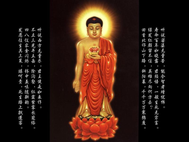 佛歌大悲咒及代码 - 善 歌 - 博海书苑