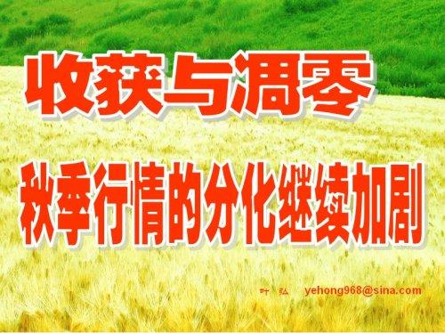收获与凋零——秋季行情的分化继续加剧 - 叶弘 - 叶弘 谈股市股民股票