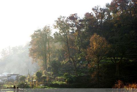 (原创)江西於源摄影---长溪 - 一搏 - 人生能有几次搏