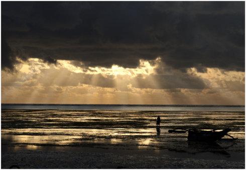 狂野东非-坦桑尼亚《七》 - Y哥。尘缘 - 心的漂泊-Y哥37国行