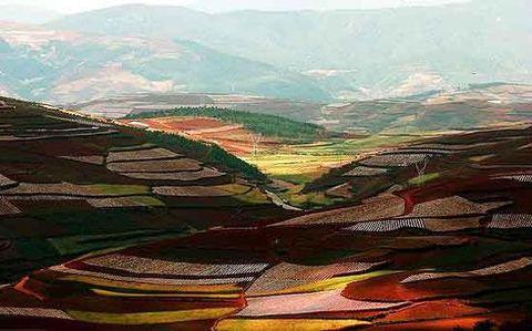 云南东川红土地 - atang - atang的相册