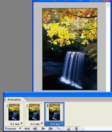 Photoshop制作枫叶飘落的动画风景 - 玫瑰夫人 -