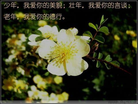 【转载】妙话人生三部曲(周未图文) - 刘老师 - 刘老师教育博客