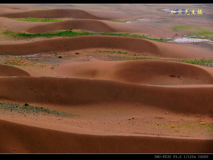 [原摄]通天河风光(3)--河边沙丘(10P) - 加贝先生 - 加贝先生的博客