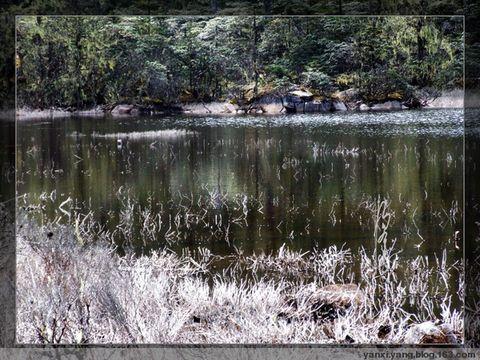 〔原创摄影15幅〕老君山秋色 - 烟溪杨 - 烟溪.杨 的原创摄影博客
