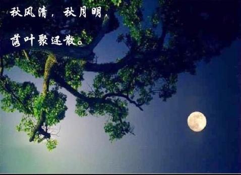 凝视天上月亮