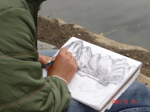 大榕树速写_28零基础学绘画钢笔风景速写榕树的画法高