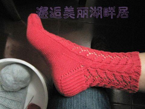 织友群作业交差篇——懒人短筒袜 - 湖畔居 - 湖畔居的博客