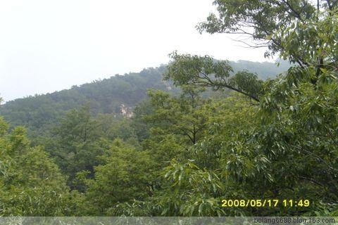 太平山森林公园 - 微风 - 微风