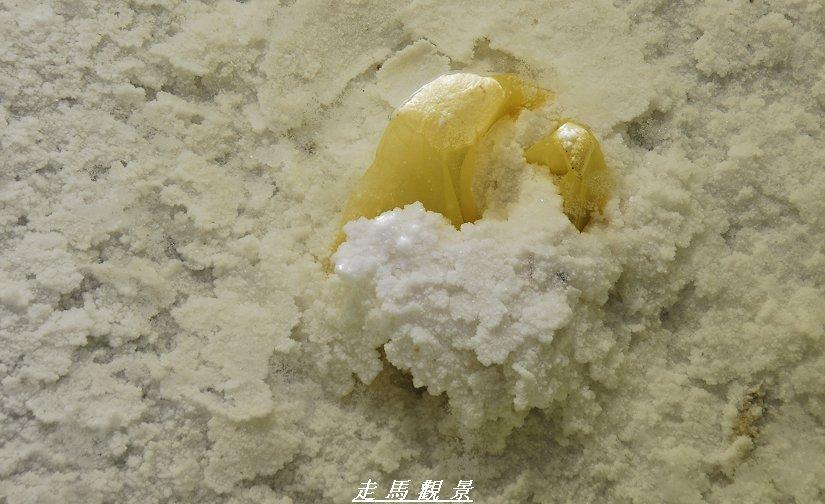 青藏高原之行____茶卡盐湖的早晨 - 西樱 - 走马观景