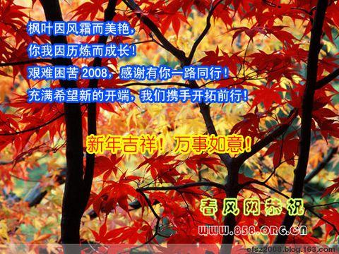 春风新年祝福 - 春风使者 - 春风饭米粒