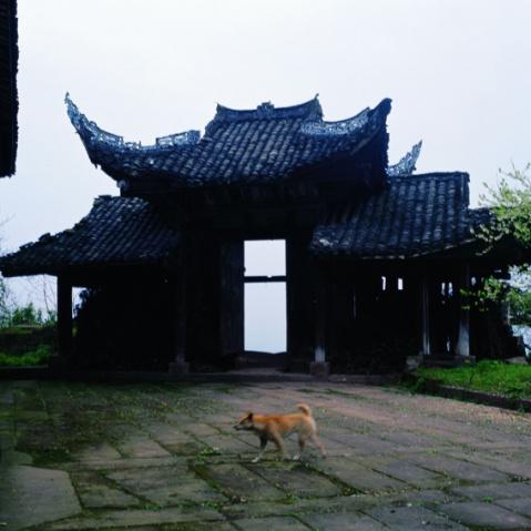 悟惑寺 - 颜长江 - YANCHANGJIANG