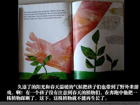 绘本故事:小种子 - 心手相连 - 温馨家园