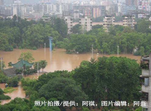 阿祺快拍:716大水淹韶城 阿祺家生活纪实(照片) - don - 休息萬歲~