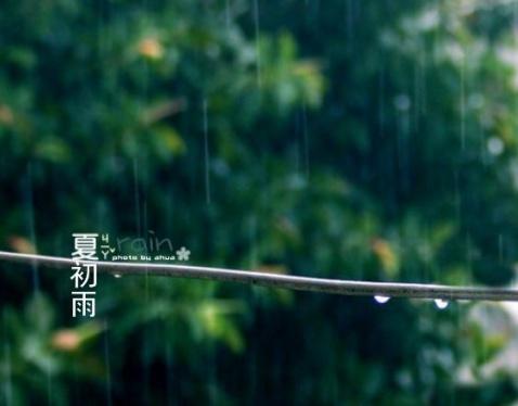 夏初雨【原创】 - ltouy - ltouy的博客
