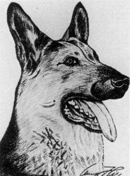 希特勒所绘温情画作,战争狂人的细腻艺术天赋(组图) - 刻薄嘴 - 刻薄嘴的网易博客:看世界