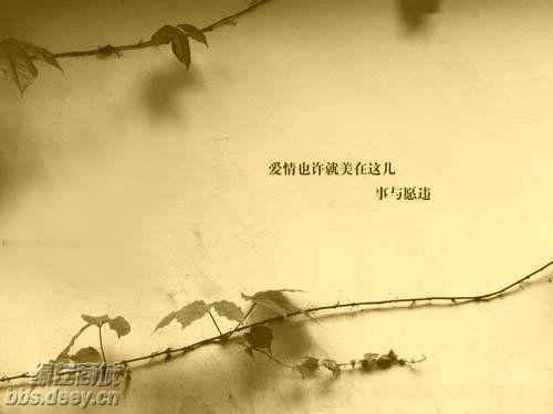 2010年11月20日 - 云燕 - 云燕的博客