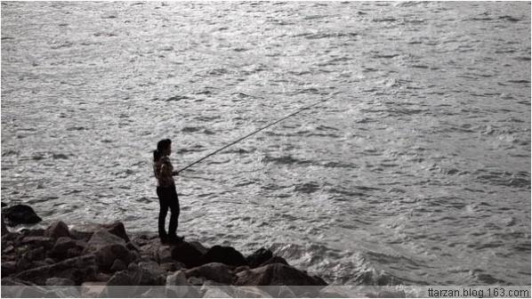 [原]深圳·2008年的第一个晴天 - Tarzan - 走过大地