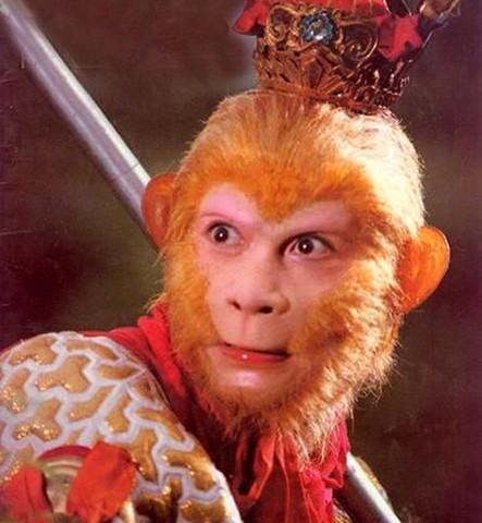 【美猴王之家】 - 【九目神雕】 - 【九目神雕】的艺术空间