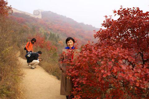 【图文原创】2007年10月北京行之一红叶传情 - 雨后彩虹 - 雨后彩虹的博客