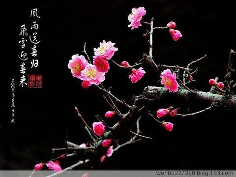 邓小平对后人的十点警告(转载) - 文静 - 文静的博客